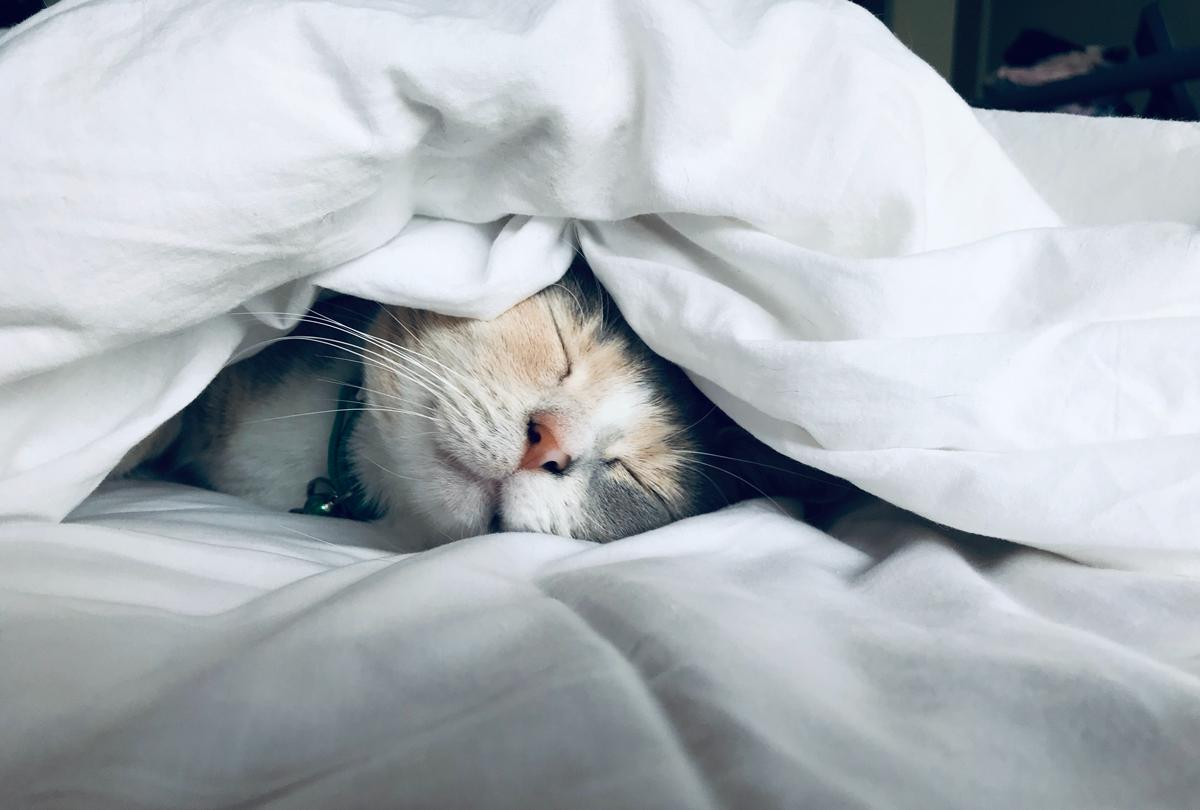Les astuces pour réussir à bien dormir dans un hôtel
