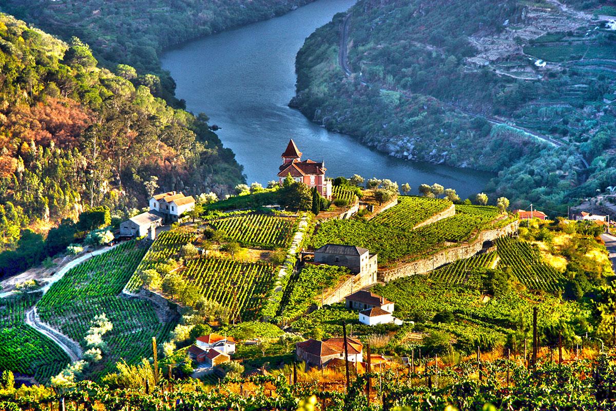Vallée du Douro Portugal